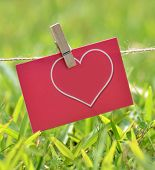 Red Valentine's Day cards in a natural background