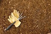 Mulch and Garden Gloves with Rake