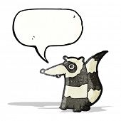 cartoon raccoon with speech bubble