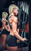 picture of physical exercise  - fitness woman doing triceps exercises in the gym - JPG