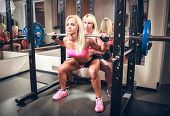 Young sexy women in the gym doing squat with barbell