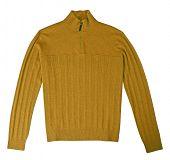 yellow jacket isolated on white