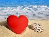 Conch shell with heart on beach