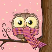foto of owls  - Cute Owl with scarf on a brunch - JPG