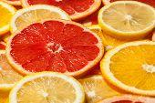 Colorful citrus fruit - lemon, orange, grapefruit - slices background