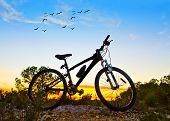 mountain bike at dawn