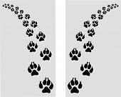footstep of dog