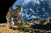picture of spaceman  - Astronaut on his knees in front of a bush - JPG