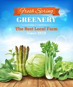 image of greenery  - Spring vegetables poster design - JPG