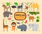 stock photo of lion  - Set of vector african animals - JPG