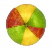 Various colorful sorts of apples sliced and joined in one isolated