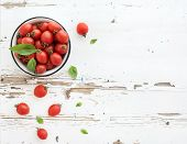 stock photo of basil leaves  - Cherry tomatoes in metal bowl and fresh basil leaves on rustic white wooden backdrop - JPG
