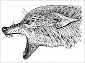 picture of wolf-dog  - Patterned head of the wolf - JPG