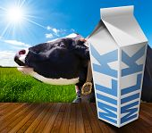 picture of white-milk  - White packaging of fresh milk with text Milk in a countryside landscape with green grass and a close up of a black and white cow mooing - JPG