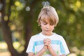 image of pentecostal  - Little boy saying his prayers on a sunny day - JPG