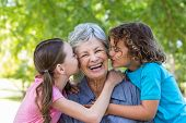 picture of extended family  - Extended family smiling and kissing in a park on a sunny day - JPG