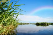 picture of vegetation  - River landscape rainbow in the blue sky the waves on the water river green tourism travel along the river boating summer sunny day after the storm a harbor for ships aquatic vegetation - JPG