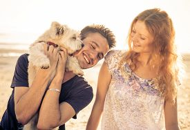 foto of cute animal face  - couple walking with dog outdoor - JPG