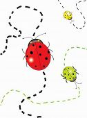 Three ladybugs with abstract tracks