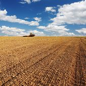 Tractor in field under blue sky with clouds