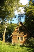 Wooden House In The Forest In The Summer poster