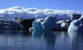 Sunlit Icebergs