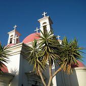Kapernaum Palms And Crosses 2010