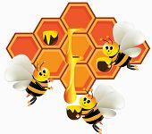 Honey_bee_production