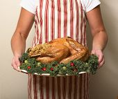 Person in Apron holding Turkey