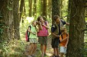 Kinderen kijken in bossen