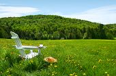 White Adirondack chair in a field of tall grass on a sunny day