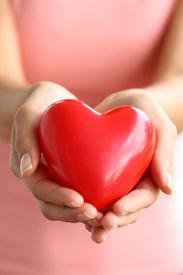 foto of hand heart  - Hands holding red heart - JPG