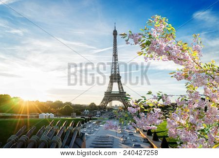 poster of Eiffel Tower From Trocadero At Sunrise At Spring, Paris, France