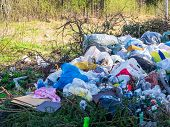 Large Garbage Dump In The Forest, Environmental Pollution By Waste poster