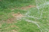 Soccer Net On Green Grass., Football Net poster