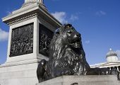 lTrafalgar Square in London.  UK