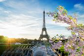 Eiffel Tower From Trocadero At Sunrise At Spring, Paris, France poster