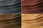 Hair Colors Palette. Hair Texture Background, Hair Colours Set. Tints. Dyed Hair Color Samples. poster