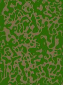 Texture - Background: military camouflage green and brown