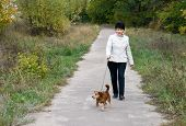 picture of dog park  - The woman walks with dog in autumn park - JPG