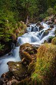 Nature Rainforest River Cascade. Stream In Forest Nature. Green Forest Stream. Nature. Stream. Natur poster