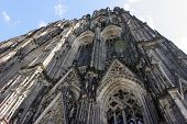 Frog Eye View Of The Cologne Dom