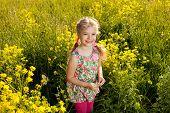 Menina engraçada entre flores silvestres amarelos
