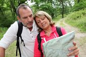 Senior couple rambling in forest with map
