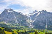 Summer Alpine Landscape Around Village Grindelwald In Switzerland. Taken On The Trail Leading To Bac poster