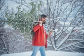 Santa Claus With Christmas Tree. Young Lumberjack Bears Fir Tree In The White Snow Background. Winte poster