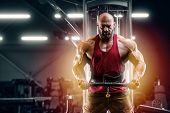 Bodybuilder Handsome Strong Athletic Man Pumping Up Biceps poster