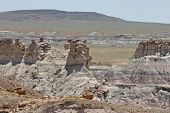 Scenic Petrified Forest