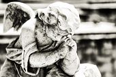 stock photo of cherub  - Black and white vintage image of a sad mourning angel on a cemetery with a diffused background - JPG