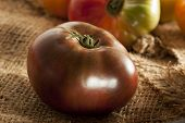 Frische Bio-reif-Heirloom Tomatoes